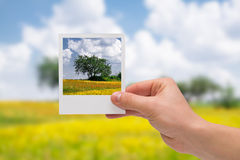 Holding Instant photo. Royalty Free Stock Images