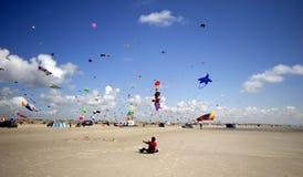Holding kites Stock Image