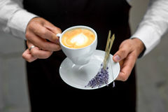 Holding lavender cappuccino Stock Photo
