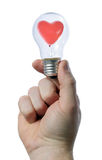 Holding light bulb Royalty Free Stock Photo