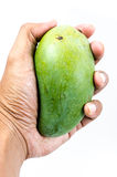 Holding Mango. Royalty Free Stock Photography