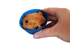 Holding a muffin. A home baked apple raisin muffin on a white background Royalty Free Stock Photography