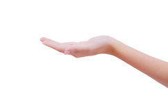 Holding out a hand Stock Photography
