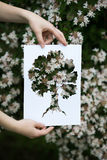 Holding paper cut miniature tree over blooming tree Royalty Free Stock Photos