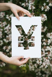 Holding paper cut miniature yuan over blooming tree Royalty Free Stock Image