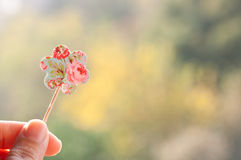 Holding paper flower Stock Images