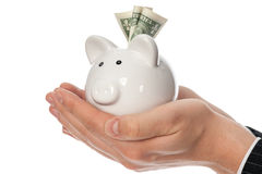 Holding piggy bank Royalty Free Stock Photography