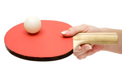 Holding a Ping-Pong Paddle Royalty Free Stock Photography