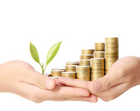 Holding plant sprouting from  handful of coins Royalty Free Stock Photo