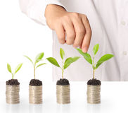 Holding plant sprouting from a handful of coins Royalty Free Stock Photo