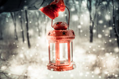 Holding a red candle lantern in the winter forest. Royalty Free Stock Image