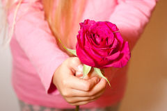 Holding a red rose Royalty Free Stock Images