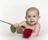 Holding Rosa del bambino Fotografie Stock Libere da Diritti