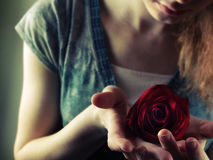 Holding Rosa della ragazza Immagini Stock