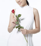 Holding rose bouquet. Girl holding a red rose stock images