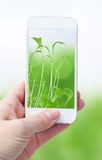 Holding smart phone against  green nature  background Stock Photos
