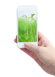 Holding smart phone against green nature royalty free stock image