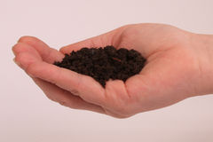 Holding some dirt Royalty Free Stock Photos