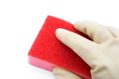 Holding a sponge Stock Photography