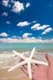 Holding starfish Royalty Free Stock Photography