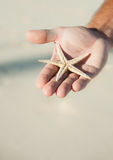 Holding a Starfish Royalty Free Stock Images