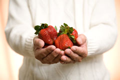 Holding strawberries Royalty Free Stock Photography