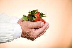 Holding strawberries. A shot of a man holding a bunch of strawberries Stock Photo