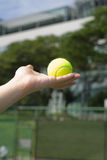 Holding the Tennis Ball Royalty Free Stock Images