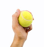 Holding tennis ball Stock Images