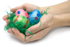 Holding Three Easter Eggs. Female hands holding an easter nest. Isolated on a white background Stock Photo