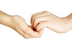 Holding together hands Stock Photography