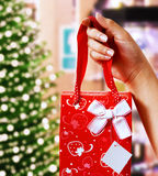 Holding Up A Christmas Gift Royalty Free Stock Photos