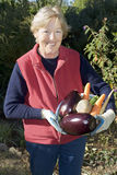 Holding vegetables. Mature woman holding vegetables in the garden stock image
