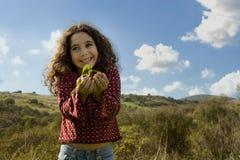 Holdinganlage des kleinen Mädchens lizenzfreie stockbilder