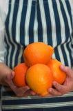 holdingapelsiner royaltyfri bild