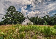 The Holdout Against Nature`s Takeover. The abandoned house, located along country road in the middle of North Carolina, will eventually be consumed by the forces Stock Photo