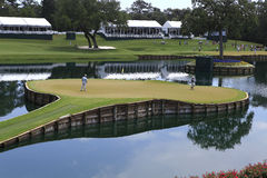 Hole 17 at The Players Championship 2012 Royalty Free Stock Images