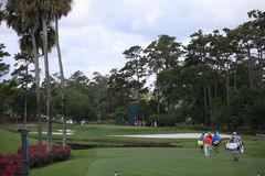 Hole 3 , The Players, TPC Sawgrass, FL Royalty Free Stock Images