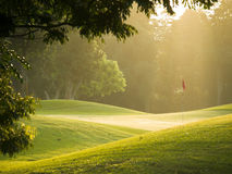 Hole. Putting green illuminated at sunrise by sun beams through the trees surrounding it Stock Photos