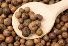 Hole allspice(jamaica pepper) with wooden  spoon Royalty Free Stock Photography