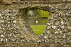 A hole in the brick wall. A hole in brick wall. A swan in the pond behind the wall Royalty Free Stock Photography