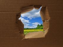 Hole in cardboard Royalty Free Stock Photos
