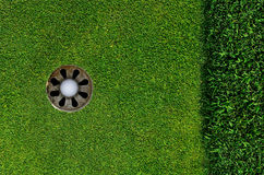 In the hole. Close up of a golf ball in the hole Royalty Free Stock Image