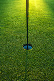 In the hole. Colf court Royalty Free Stock Photos