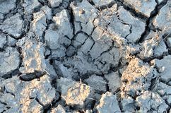 Hole in the dry soil Stock Photos