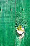 Hole in a fence Stock Image