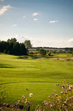 Hole on a Golf Course. A hole on a golf course with green grass and blue sky Royalty Free Stock Photo