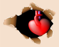 Hole in my body with the heart Royalty Free Stock Photos