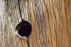 Hole in the old wood royalty free stock photos
