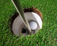 Hole In One ! Stock Photography